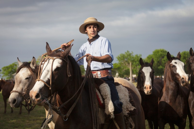 Ga 250 Chos Meet The Heroes Of The Pampas The Yerba Mate Blog